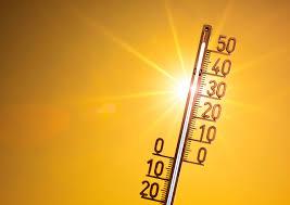 Rekordowo ciepłe tegoroczne polskie lato