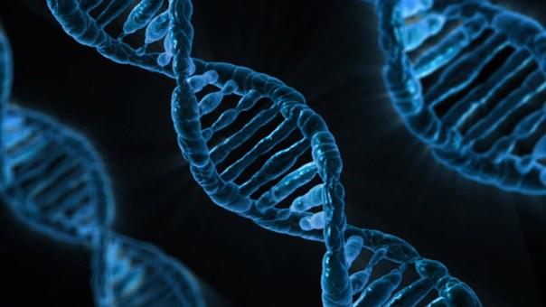 Nowa metoda edycji genów