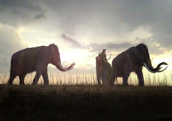 Ogromne pułapki sprzed 15 tys. lat pełne kości mamutów