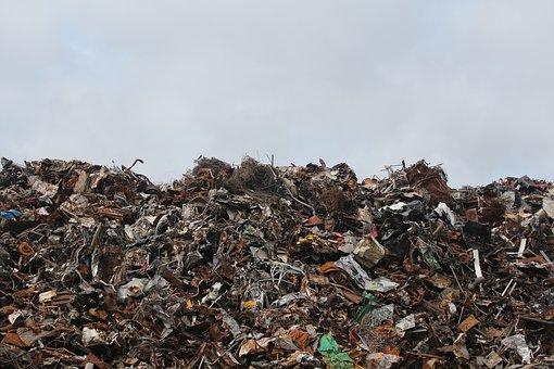 Nadmiar śmieci w Polsce