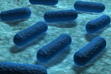 E.coli pochłaniające dwutlenek węgla