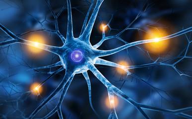 Regeneracja uszkodzonych nerwów