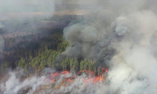 Pożar wokół elektrowni w Czarnobylu – sprawdź aktualne promieniowanie